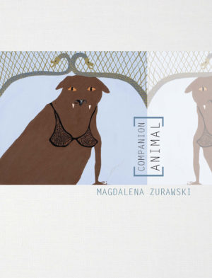 Companion Animal by Magdalena Zurawski, Book cover showing an illustration of a dog with fangs wearing a black lace bra, looking straight at the viewer/