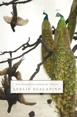 How Phenomena Appear to Unfold by Leslie Scalapino, Book cover showing intricately drawn peacocks on the right and wild turkeys to the left.