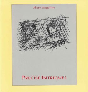 cover of precise intrigues by mary angeline; light grey background with black line doodles making a cross-hatched square