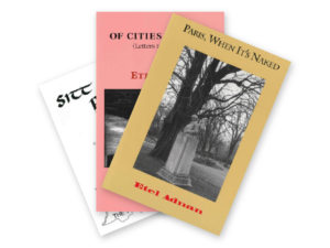 Prose from Etel Adnan three-book Bundle