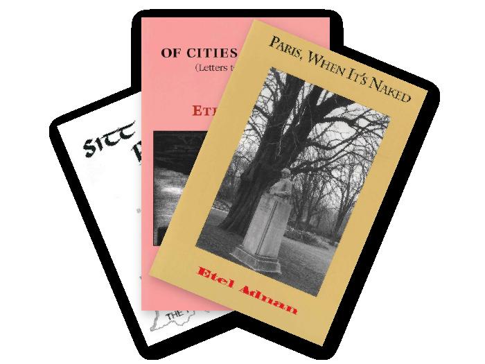 Prose from Etel Adnan three-book Bundle