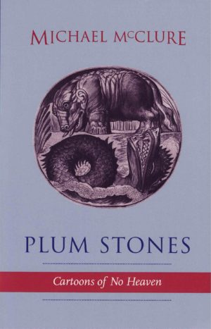 cover of Plum Stones by michael mcclure, light blue background with circular illustration at the center of boar-like creature standing on land and a dragon in water