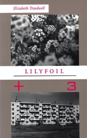 cover of Lilyfoil by Elizabeth Treadwell