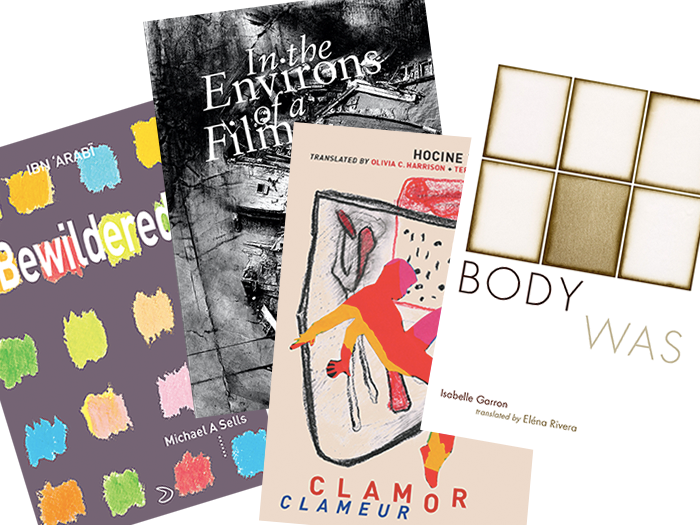 Book covers for Bewildered, In the Environs of a Film, Clamor, and Body Was